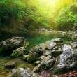 River deep in mountain forest — Stock Photo