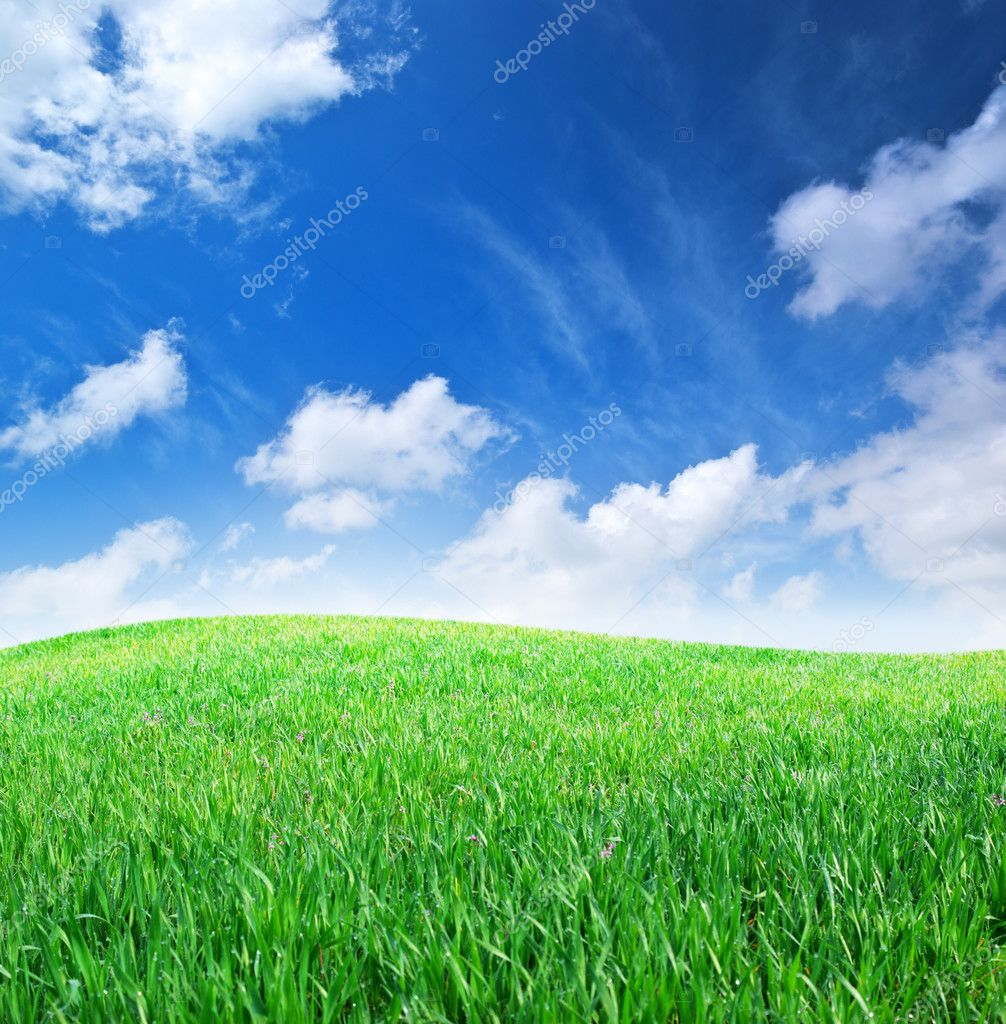 Grass and deep blue sky. Nature composition. — Stock Photo #3411518