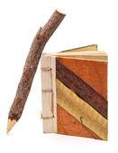 自然の鉛筆とメモ帳 — ストック写真