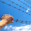 Hand of prison and sky background. - Stock Photo