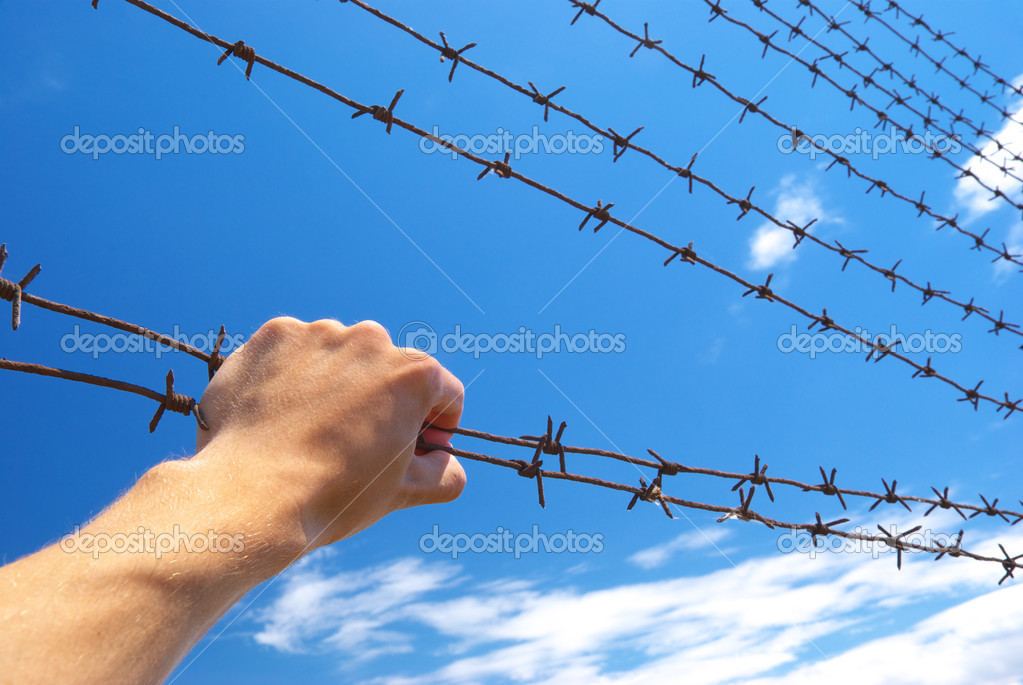 Hand of prison and sky background. Conceptual scene.  — Stock Photo #3624164