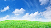 Grass and deep blue sky — Stock Photo