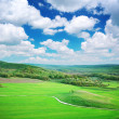 Green meadow in mountain — Stock Photo #3678239