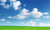 Lawn and cloudy sky — Stock Photo