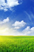 Plain and deep blue sky — Stock Photo