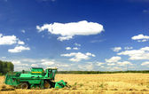 Harvester combine — Stock Photo