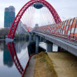 Modern red moscow car bridge — Stock Photo #3231333