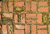 Mosaic concrete pavement of the road — Stock Photo