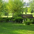 Stock Photo: Romantic bench in peaceful park