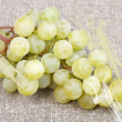 White grape varieties Muscat — Stock Photo