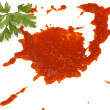 Blot of tomato sauce - Stock Photo