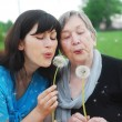 Grandmother and granddaughter — Stock Photo #3173688