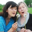 Happy grandmother and grand daughter — Stock Photo
