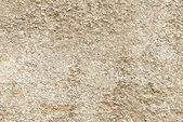Bumpy concrete wall texture — Stock Photo