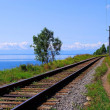 Circum-Baikal railroad — Stock Photo #2886090