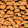 Logs - Stock Photo
