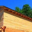 Rural house under construction — Stock Photo #3474139