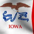 Flag of Iowa, USA - Stockfoto
