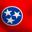 Stock Photo: Flag of Tennessee, USA