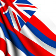 Flag of Hawaii, USA — Stock Photo
