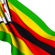 Flag of Zimbabwe — Stock Photo #4416089
