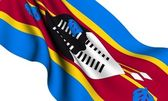 Flag of Swaziland — Stock Photo
