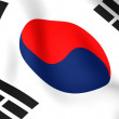 Flag of Korea — Stock Photo