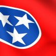 Flag of Tennessee, USA. — Stock Photo #4796508