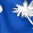 Flag of South Carolina, USA. — Stock Photo