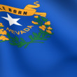 Stock Photo: Flag of Nevada, USA.
