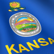 Stock Photo: Flag of Kansas, USA.