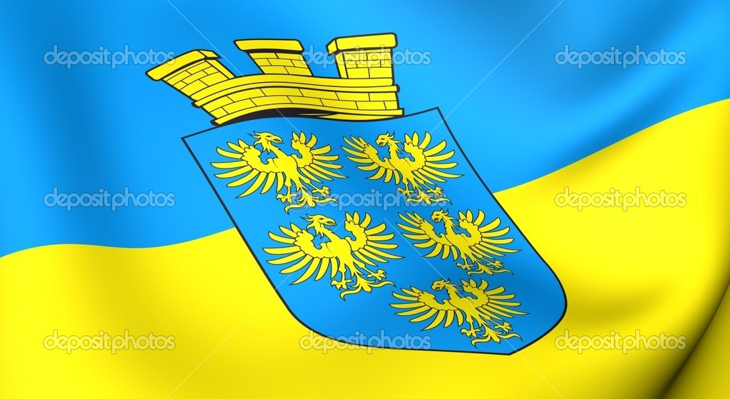 Flag of Lower Austria. Close up. Front view.  — Stock Photo #4876588