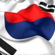 Flag of Korea — Stock Photo #4890307