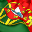 Flag of Portugal — Stok fotoğraf #4890494