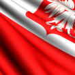 Stock Photo: Flag of Poland