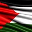 Flag of Palestine — Stock Photo #4990971