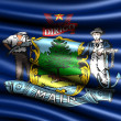 Flag of Maine — Stock Photo #5044251