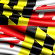 vlag van maryland — Stockfoto