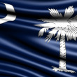 Flag of South Carolina — Stock Photo