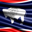 Flag of Wyoming - Stock Photo