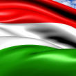 Flag of Hungary - Stock Photo