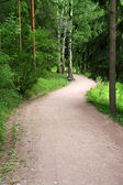 Curved road in park — Stock Photo