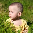 Baby sitting in grass — Stock Photo #2938638