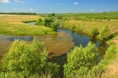 Panoramic landscape with pond — Stock Photo