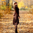 Girl in autumn park - Foto de Stock