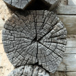 Gray wooden weathered timber - Stock Photo