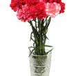Carnation flowers bouquet in vase — Stock Photo #3114797