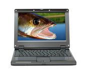 Laptop pequeno, com temas de pesca — Foto Stock