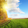 Autumn landscape with green field — Stock Photo #3590828
