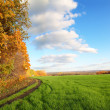 Autumn landscape with green field — Stockfoto